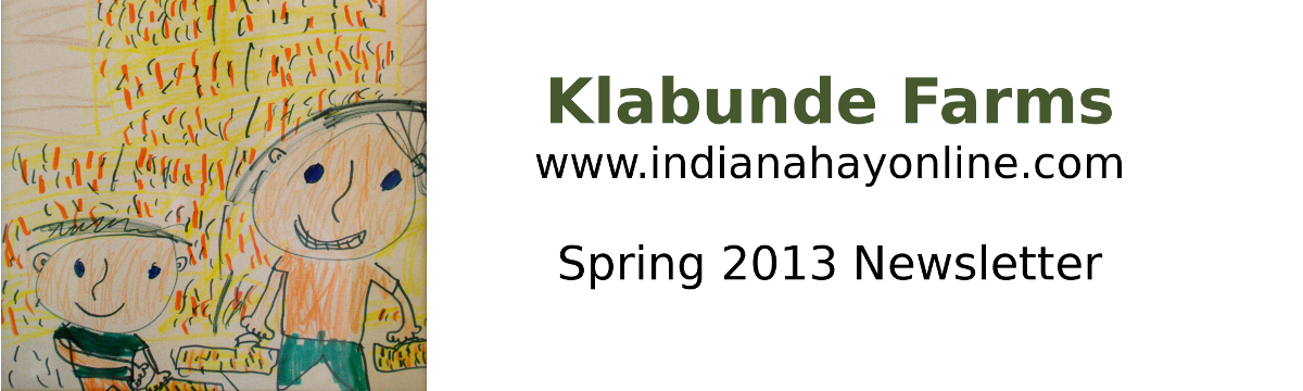 2013 spring newsletter header