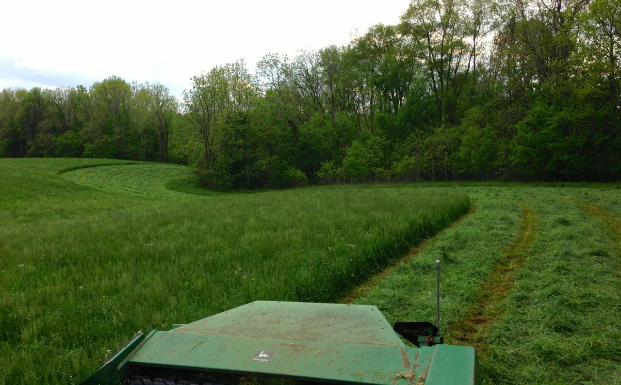 2015-05-17 cutting